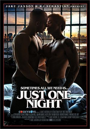 Just One Night DVD