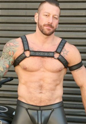 Neoprene Bulldog Half-Harness 2.0