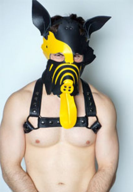 Dog Complete Leather Puppy Mask Yellow