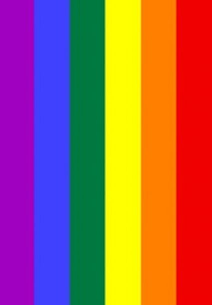 3' x 5' Gay Pride Flag