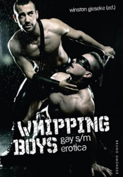 Whipping Boys, Gay S/M Erotica
